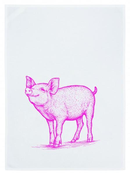 17;30 Trockentuch 50x70cm Schwein