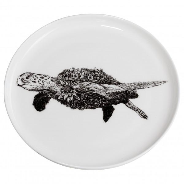 Marini Ferlazzo Teller 20cm, Grüne Meeresschildkröte + Geschenkbox